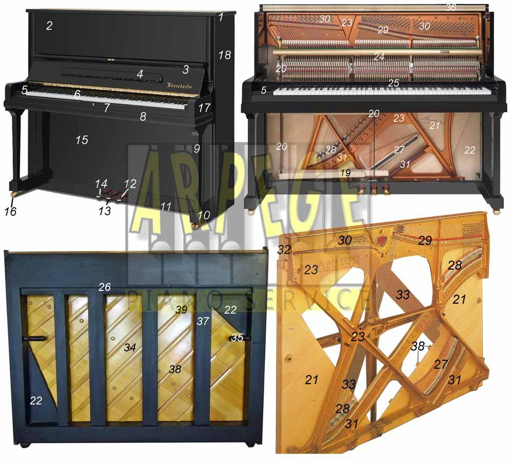 Anatomie d'un piano droit, vues en coupes, avec numérotation et nomenclature