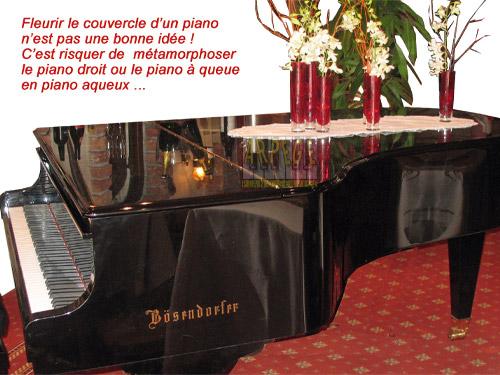 Ne jamais mettre de vase fleuri ou de pot de fleurs sur un piano car risque de dégâts des eaux