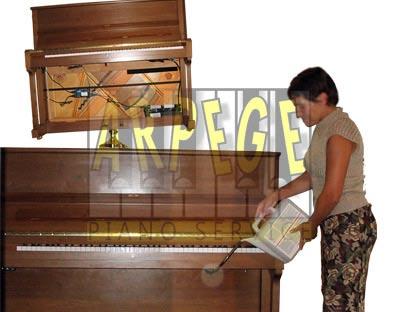 Dampp Chaser, sytème de contrôle de l'humidité relative dans un piano droit ou piano à queue