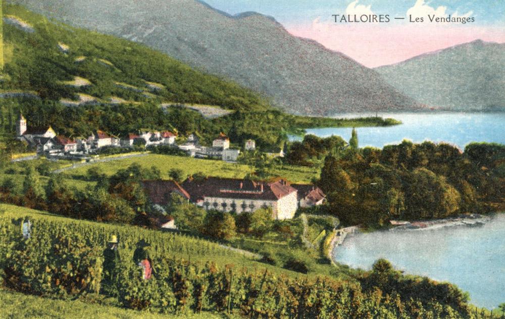 cartes postales de Talloires : les vendanges, Steve Barrager